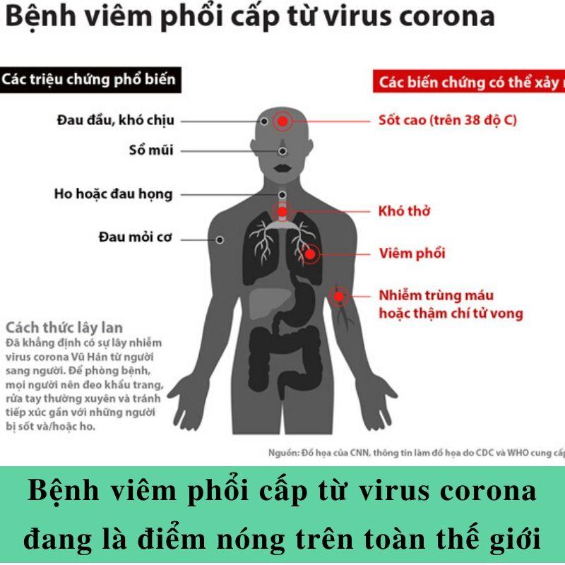virus corona và cách tăng cường hệ miễn dịch cho cơ thể